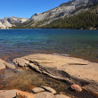 The mountain lake on pass Tioga — Stock Photo