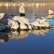 Lake stalagmites of the Tufa are reflected in water  — Stock Photo