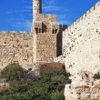 The ancient walls and Tower of David - Stock Photo