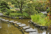 A stream and path from stones — Stock Photo