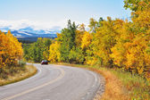 Autumn in Canada. The road abruptly turns among trees — Stock Photo
