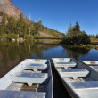 Small white boats — Stock Photo