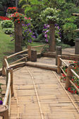 A wooden path among flower beds — 图库照片