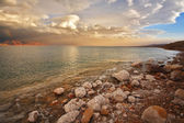 Coast of the Dead Sea in Israel — Stock Photo