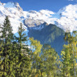 Chamonix - in the French Alps — Stock Photo #27003721