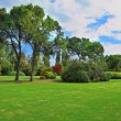 The famous Garden Park Sigurta in Italy — Stock Photo
