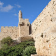 The ancient walls of the Jerusalem — Foto de Stock