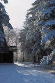 Slunečný den vánoční. hotel útulných lyžařských — Stock fotografie