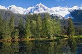 Chamonix - ski resort in the French Alps — Stock Photo