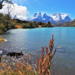 Majestic national park Torres del Paine, Chile. — Stock Photo