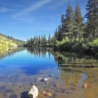 In the water reflects coniferous forests — Stock Photo