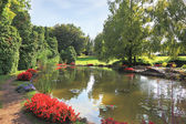 Quiet picturesque pond — Stock Photo