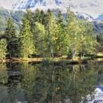 Chamonix - a famous ski resort — Stock Photo