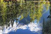 Reflections of snow-capped peaks and trees — Stock Photo