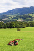 The charming rural landscape — Stock Photo