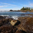 Evening low tide on the beach — Stock Photo #36075203