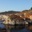 Rocky Pacific coast in the Reserve Point Lobos — Stock Photo