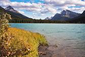Coast of mountain lake — Stock Photo