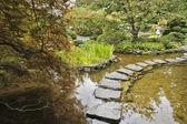 Jardin japonais. le flux et le chemin d'accès — Photo