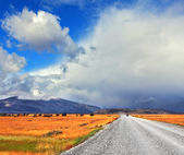 The road in the endless pampas — Stock Photo