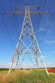 Hochspannungs-Leitungen — Stockfoto
