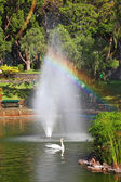 Water fountain jets — ストック写真