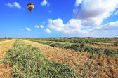 The balloon flies over a field of wheat — Stock Photo
