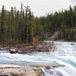 The small islet in falls of the river Banff — Stock Photo