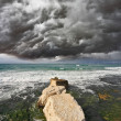 Severe storm cloud  — Stock Photo #41276367