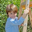 Stock Photo:  boy with smile poses on step-ladder