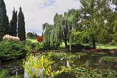 Bassin d'agrément et de fleurs colorées — Photo