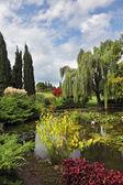Bassin d'agrément et arbres colorés — Photo