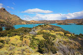 Azure water of Lake Pehoe between green  coast — Stock Photo