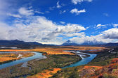 Meandering river bed of yellow coast — Stock Photo