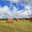 Stock Photo: Stack hay on summer field