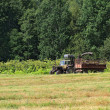 Old tractor on summer field — Stock Photo