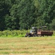 Stock Photo: Old tractor on summer field