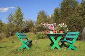 Summer flowerses on garden table — Stock Photo