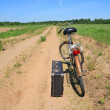 Stock Photo: Old valise near old bicycle on rural road