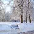 Wooden bench in town park — Stock Photo