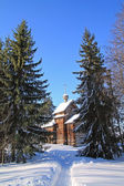 Wooden chapel amongst snow tree — Stock Photo