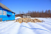 Damp firewood near rural building — ストック写真