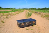 Old valise on rural road — Stock Photo