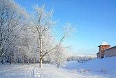 雪山上老化砖堡垒 — 图库照片