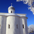 Tree in snow against christichurch — стоковое фото #13570015
