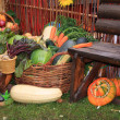 Vegetable set on rural market — Stock Photo