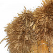Stock Photo: Wheat sheaf on white background