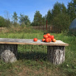 Ripe tomatoes on wooden bench — Stock Photo