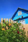 Göksel zemin üzerine mavi kırsal ev — Stok fotoğraf