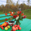 Autumn still life on green table — Stock Photo #13894166